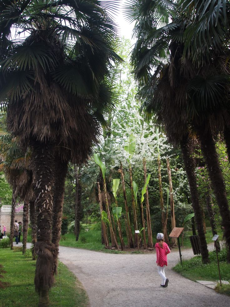 orto botanico, Padova, Italy