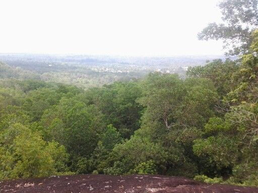 I am on the top of Palangkaraya City now, from Bukit Tangkiling, Central Borneo