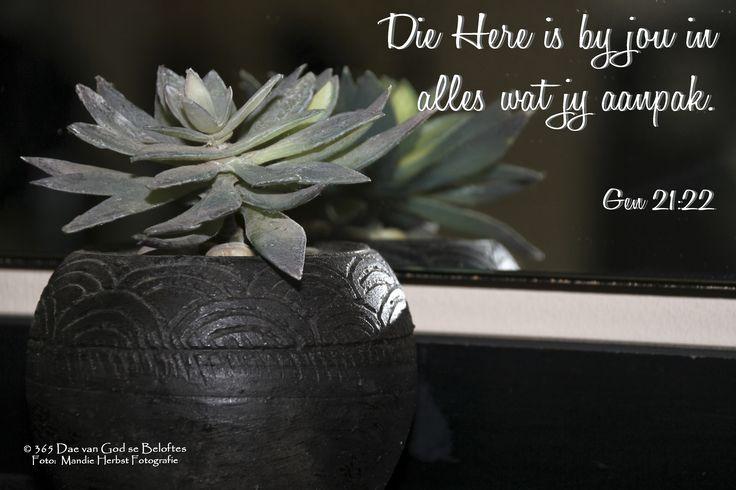 Dag 50 Bybelvers Genesis 21:22 Die Here is by jou in alles wat jy aanpak.