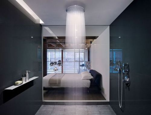shower coming from the ceiling? ok :): Showers, Rain Shower, Ideas, Interior, Shower Head, Dream House, Bedroom, Design