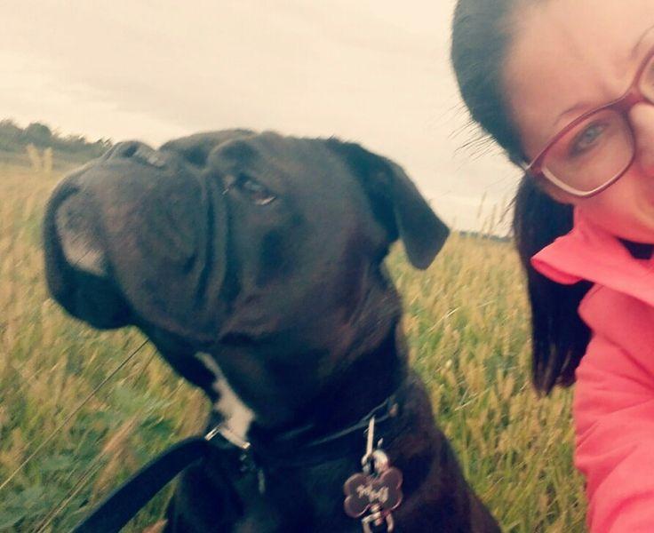 Meiner Continental Bulldogge Lady gefallen milde Temperaturen viel besser