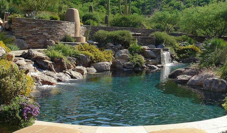 351 best images about swimming pools on pinterest for Koi pond builders sydney