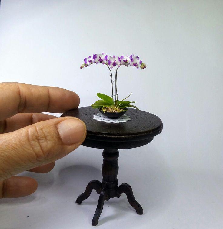 187 Best Images About Miniature Orchids Cold Porcelain