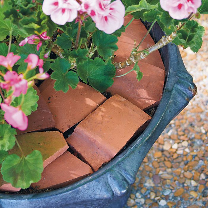 Tip of the day from Garden Gate: If cats or squirrels frequently dig in your containers, use some broken pottery shards to deter them.