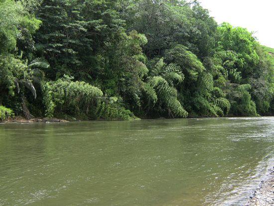 Rio la Vieja