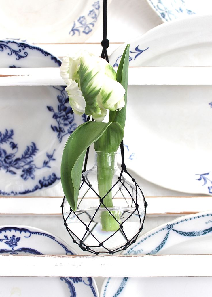 The Catch Black ampelvas  #hangingvase #vase #spring #vår
