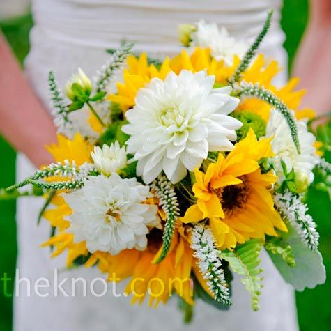 .: Bridal Bouquets, Wedding Ideas, Sunflowers, Wedding Flowers, Sunflower Bouquets, White Dahlia