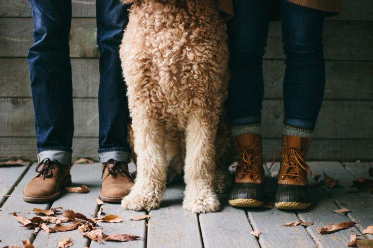 dog engagement photo    shelby seaber photography