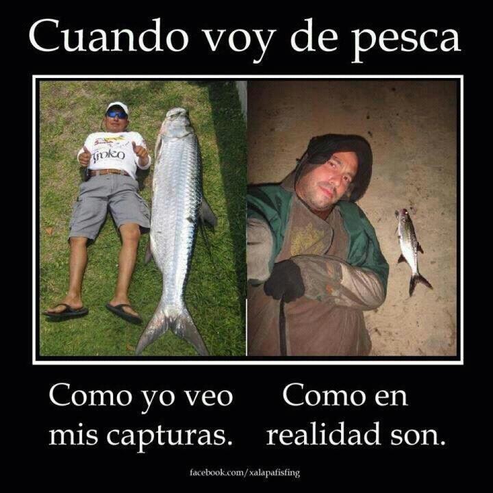 Un pescador honesto