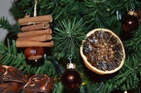 Image result for horse chestnut crafts