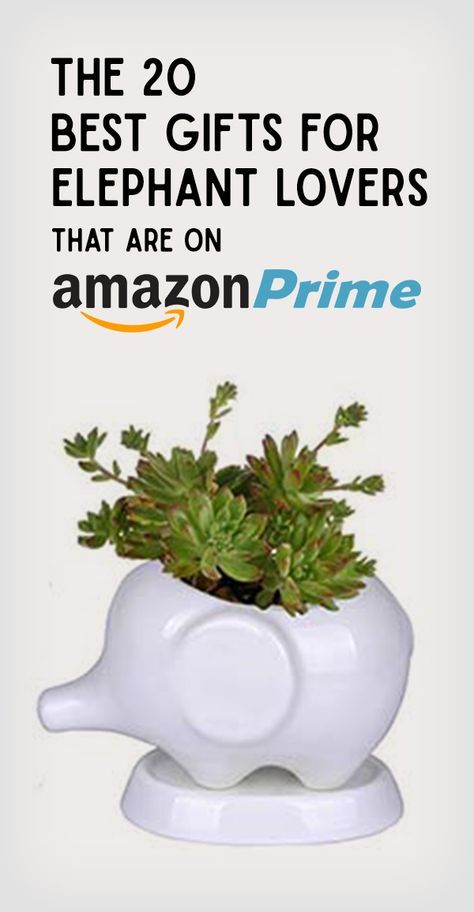 Nothing beats free 2-day shippin'! We did the work for you and collected the best gifts Amazon Prime has to offer. Love always, Trunk in Love (Trunkinlove.com)