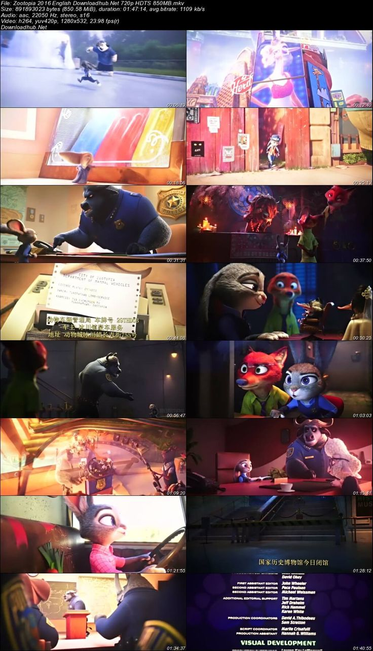 Screenshot Of Zootopia 2016 English 720p HDTS Resumeable Single Free Download Links Watch Online Free At Downloadhub.Net