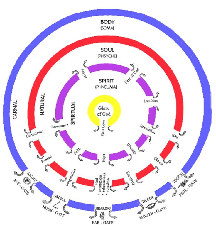 ian clayton's diagram of spirit soul and body gates. the gates are the means of seeing Him manifest in our lives. They are not for 'letting Him in', but for 'letting Him out'. Starting with the gate of First Love, we can work through them, asking God to show us if anything is blocking them, and then exercising heavenly authority to see them opened and freely flowing. The more of our gates are wide open, the more of God can be manifested in our daily lives.