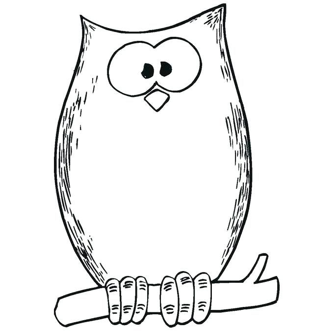 Owl Coloring Pages Pdf Download Free Coloring Sheets Owl Coloring Pages Owl Theme Classroom Coloring Pages