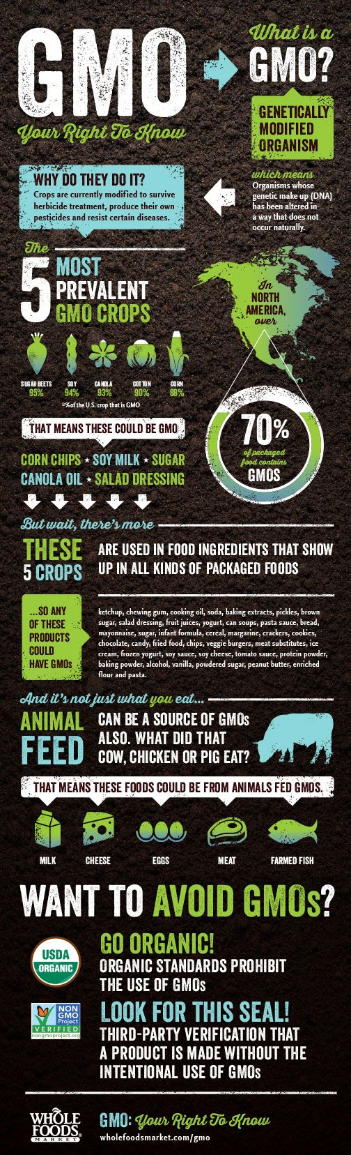You have the right to know about GMOs! (Genetically Modified Organisms) Infographic