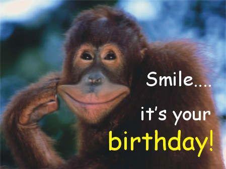 225 best Verjaardag images – Funny Monkey Birthday Cards