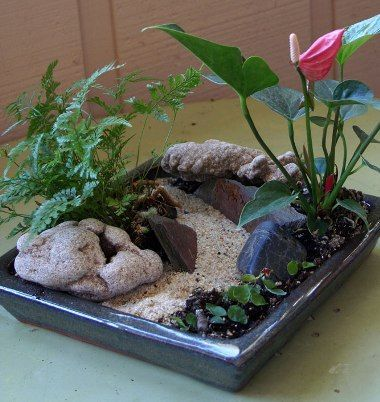 miniature garden Fairy Garden Ideas Pinterest