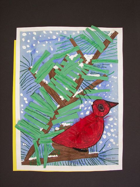 Winter red cardinal in pine tree