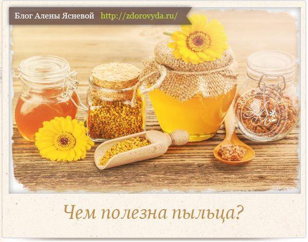 Миниатюра к статье Пчелиная пыльца— все тайны и секреты уникального пчелиного лекарства
