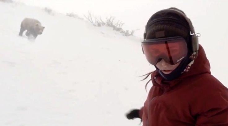 Poursuivie par un ours, cette snowboardeuse ne se doute de rien