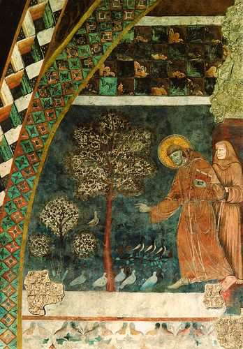Assisi, Basilica di San Francesco, Unterkirche, Die Vogelpredigt, Fresko des Franziskusmeisters (Basilica of St. Francis, Lower Church, Sermon to the Birds by the Master of St. Francis)  #TuscanyAgriturismoGiratola