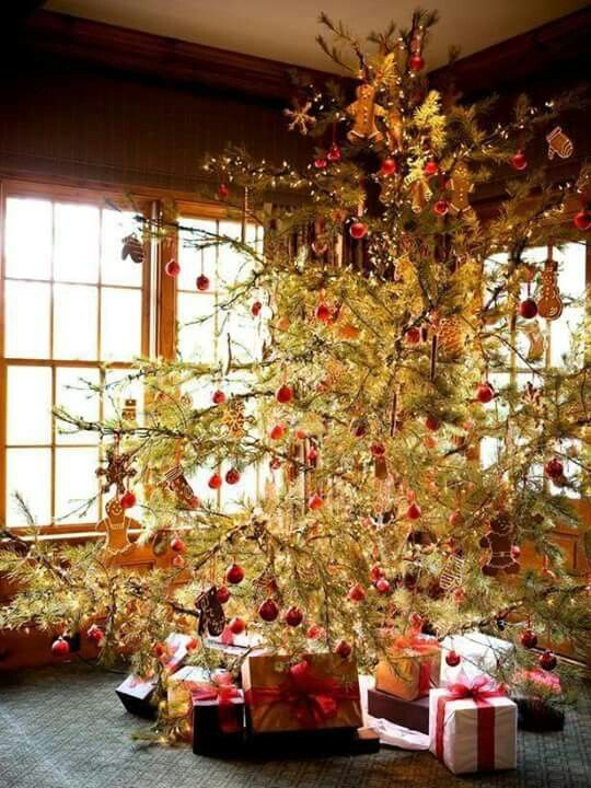 Christmas Trees of my youth
