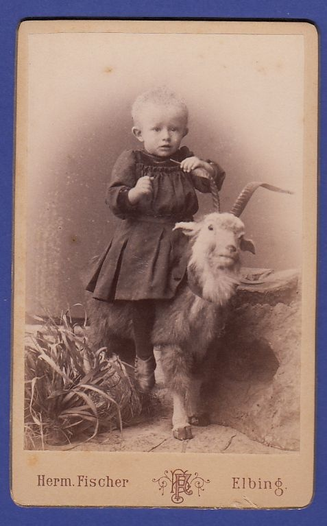 Vintage cabinet card of German boy who sits on a goat