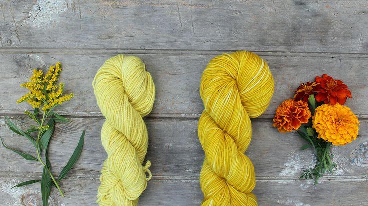 Liesl Made : Dyeing with Goldenrod and Marigolds / Verven met guldenroede en goudsbloem of afrikaantje