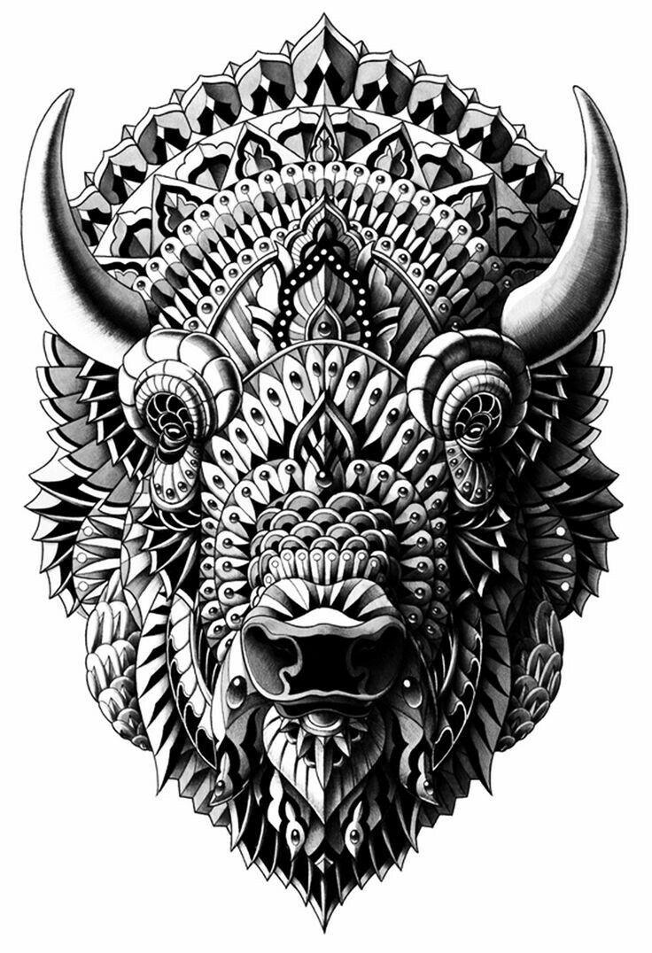 Mejores 19 imágenes de Buffalo for Deb en Pinterest   Búfalo ...