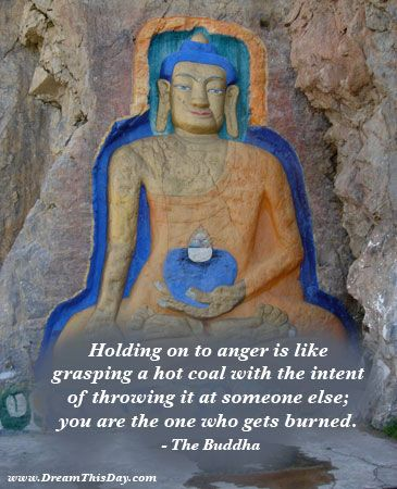 Holding on to anger is like grasping a hot coal  with the intent of throwing it at someone else;  you are the one who gets burned.  - The Buddha