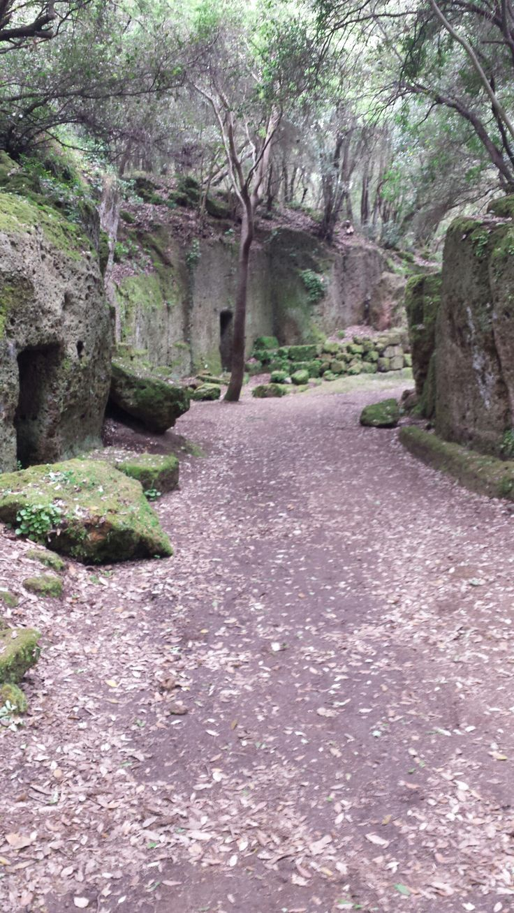 https://esploraromablog.wordpress.com/2016/04/28/via-degli-inferi-area-etrusca-vicino-roma-2/