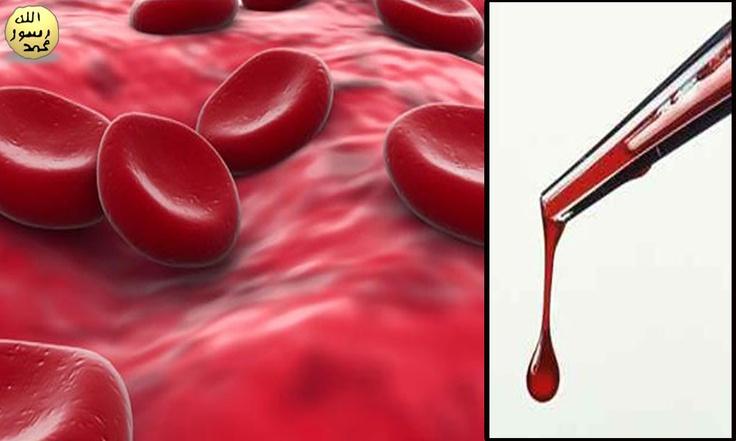 """Tek bir damla kanın %99'unu kırmızı kan hücreleri, yani alyuvarlar oluşturur. Bunlar aynı zamanda """"eritrosit"""" olarak da adlandırılmaktadırlar. Bedenimizde yaklaşık 25 trilyon kırmızı kan hücresi bulunmaktadır. Bu miktar Samanyolu Galaksisi'ndeki yıldız sayısının yüzlerce katıdır."""