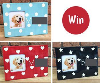 Win - Dog Photo Frame