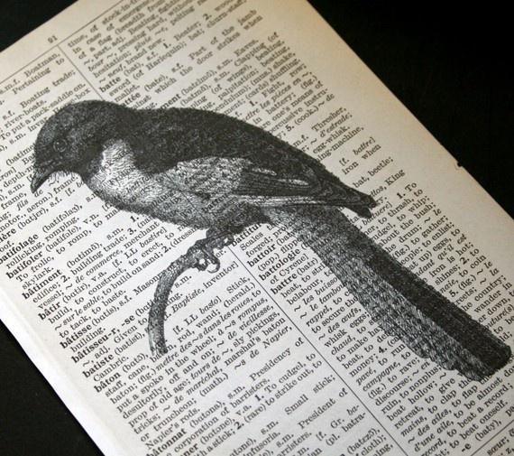 Perched Bird Print