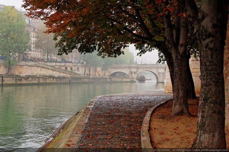 Paysage de brume automnale sur les quais de Seine - En arrière plan : le Pont Neuf Ile de la Cité, Paris.