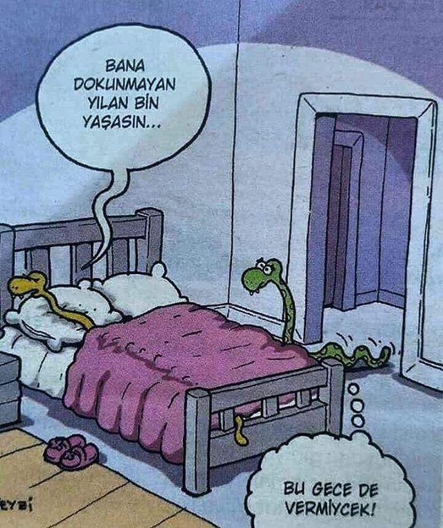 #baycekici777 #karikatür #mizah #bana #dokunmayan #yılan #bin #yaşasın #bu #gece #de #vermeyecek #komik #komedi #iyiakşamlar #iyieğlenceler #iyigeceler #fun #haveafun #enjoyable http://turkrazzi.com/ipost/1520539635688031725/?code=BUaCr4UFkXt