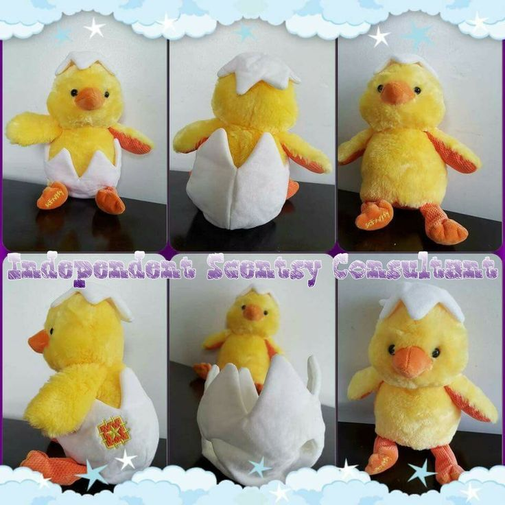 36 best easter images on pinterest scentsy fragrance and perfume eggmund the chick scentsy buddy available february 1st 2016 perfect for any easter negle Choice Image