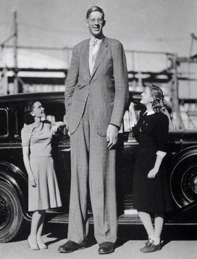 Robert Wadlow, El Gigante de Illinois. Según el Libro Guinness de los récords, fue el hombre más alto de la historia del cual existen evidencias irrefutables. Alcanzó una altura de 2.72 m con un peso de 199 Kg antes de fallecer. No dejó de crecer hasta su muerte.