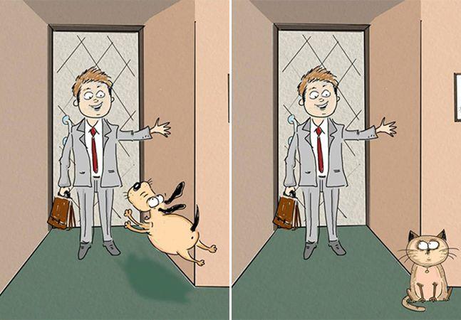 Ilustrações reações pets