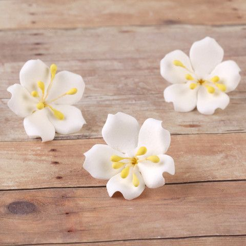 Jasmine SugarFlowers made from gumpaste perfect as cake toppers and cupcake toppers cake decorations.  Wholesale cake decorating supply.