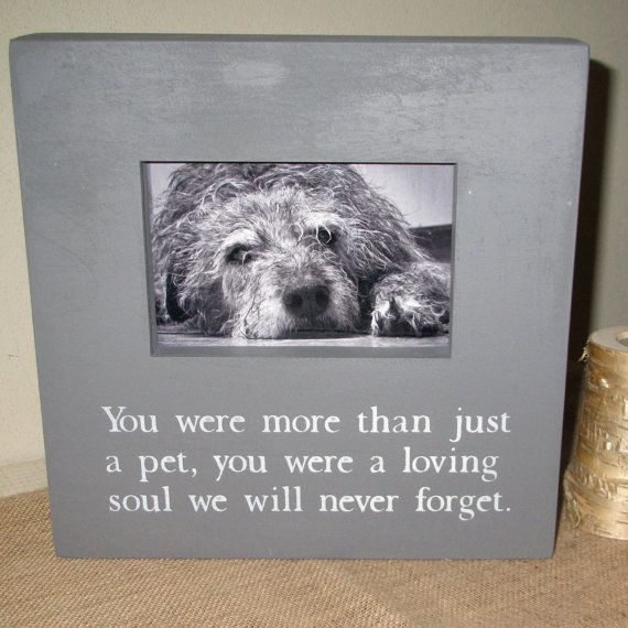 in loving memory pet loss pet memorial sympathy gift pet frame dog cat kitten puppy picture frame painted wood picture photo frame