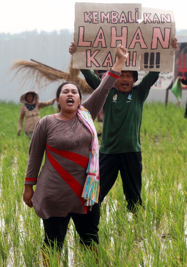 Petani perempuan di Batang, Jawa Tengah. Saat aksi menyuarakan protes atas lahan pertaniannya yang disegel tanpa izin untuk pembangunan mega proyek PLTU Batubara yang akan dibangun diatas saah miliknya.