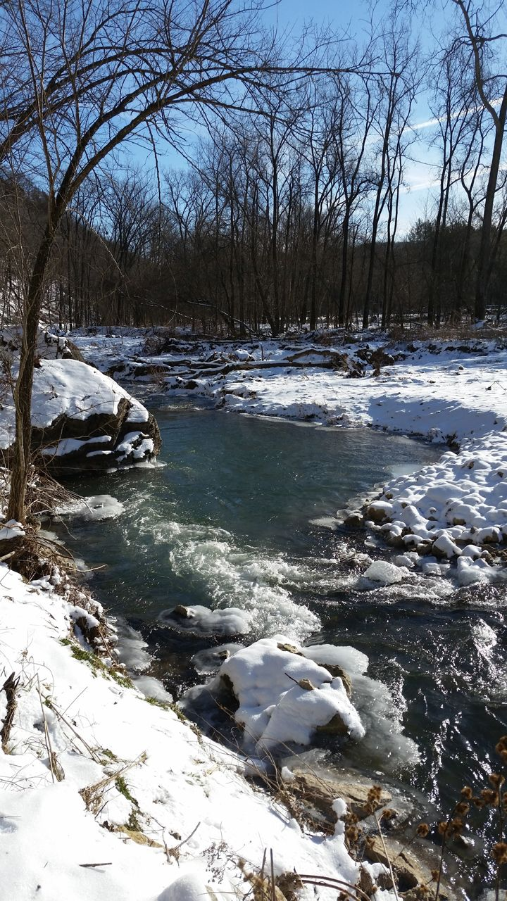 A breathtaking shot of the trout stream at Yellow River State Forest in winter | Iowa DNR