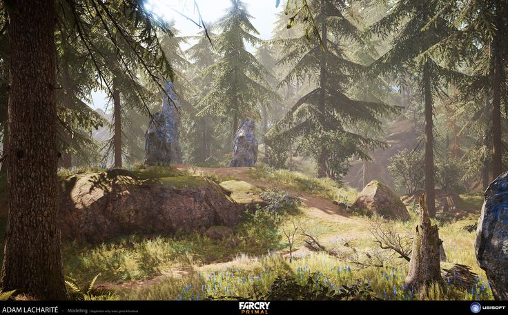 My mandate on Far Cry 4 was modeling the vegetation assets for the next gen version of the game. I worked on the trees and the bushes. I also did the fallen trunks assets.  I worked with Stephane Joncas on the modeling of the trees and the bushes and Minh Nhat Le worked on the grass. Paulette Richardson and Pascal De Sampaio did the textures of the vegetation.