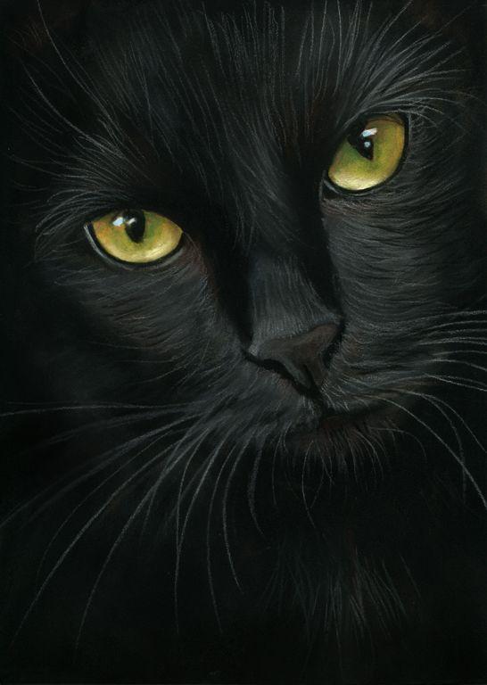 black Cat Pastel