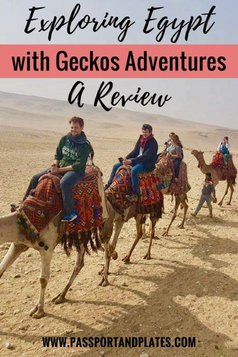 The time to cross Egypt off your bucket list is now, thanks to a favorable exchange rate and low tourism. The best way to do it? With a group tour - specifically with Geckos Adventures! Click to read my Egypt with Geckos Adventures Review and book your spot now! | http://passportandplates.com