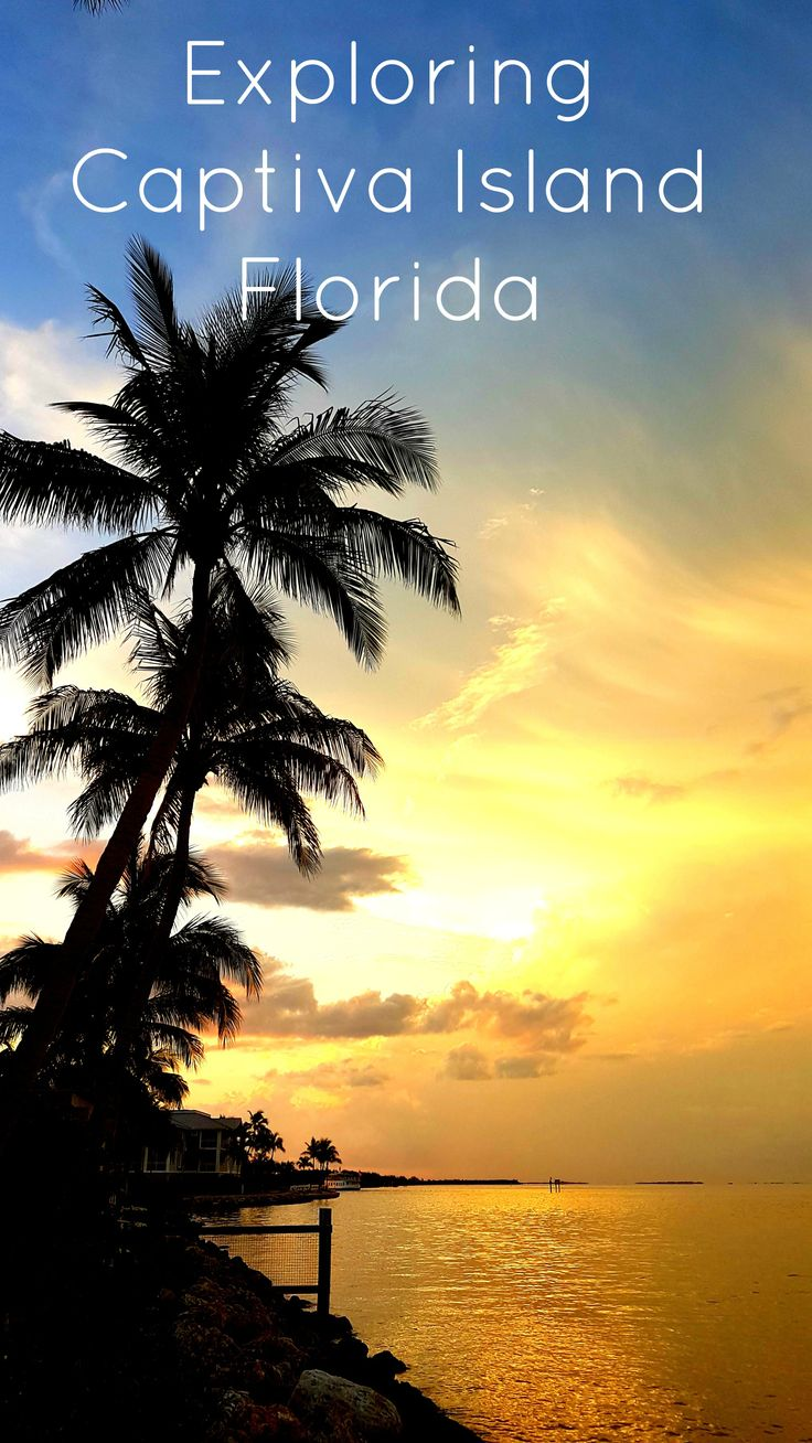 25 Best Ideas About Pine Island Florida On Pinterest Florida Florida Beaches And Florida