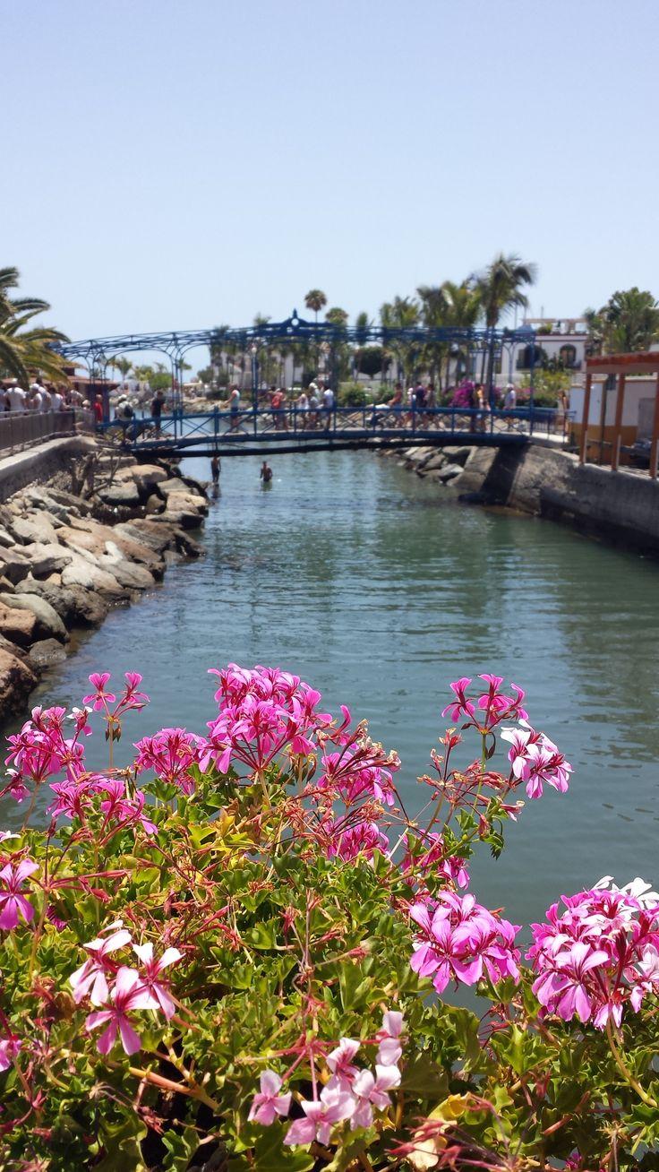 """Little Venice""; Gran Canaria."