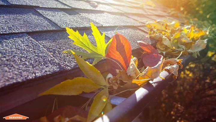 Fall Leaves Are Pretty But Not When They Clog Up Your Gutters Cleaning Gutters Now Saves Your Home From Future Damag Gutters Cleaning Gutters Home Maintenance