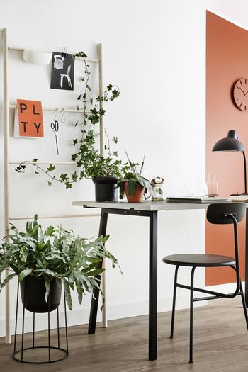 Miejsce do pracy - paleta Growth, Tikkurila Color Now 2017